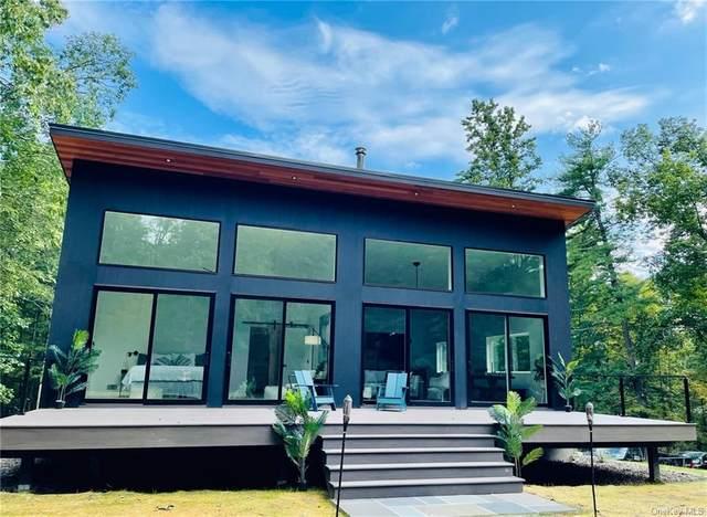 139 Krum Road, Rochester, NY 12446 (MLS #H6142891) :: Carollo Real Estate