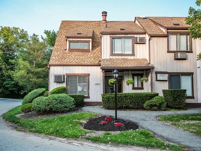1301 Swan Hollow Road, Monroe, NY 10950 (MLS #H6142983) :: Cronin & Company Real Estate