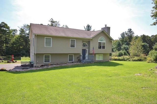 600 County Route 56, Wurtsboro, NY 12790 (MLS #H6142989) :: Kendall Group Real Estate | Keller Williams