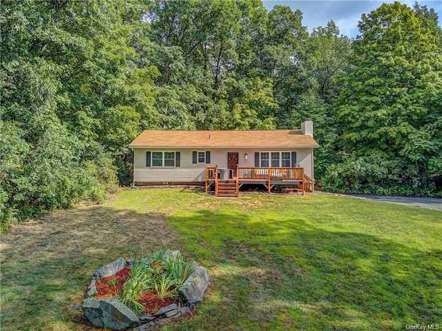 15 Maggies Way, Poughkeepsie, NY 12601 (MLS #H6143029) :: Goldstar Premier Properties
