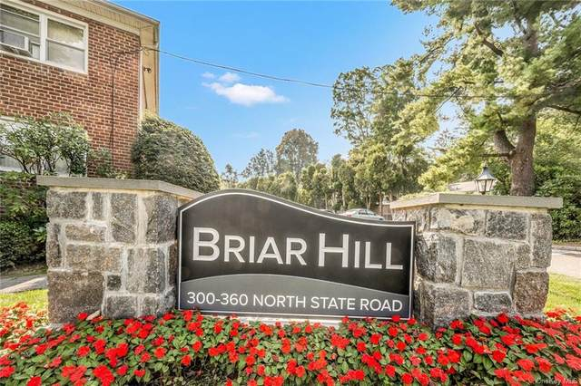 360 North State Road 3I, Briarcliff Manor, NY 10510 (MLS #H6143073) :: Nicole Burke, MBA | Charles Rutenberg Realty