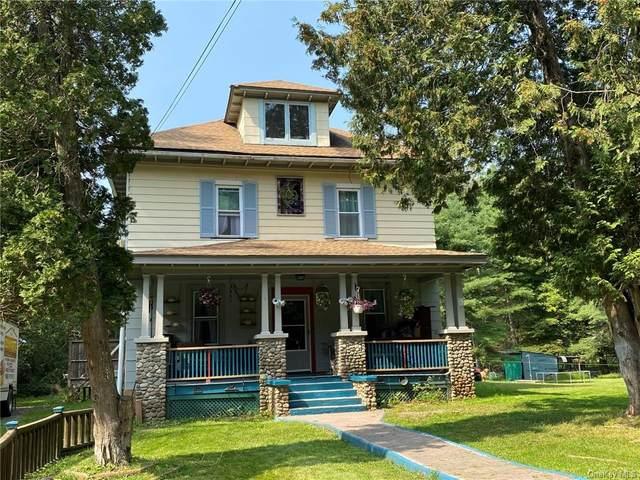 346 Katrina Falls Road, Rock Hill, NY 12775 (MLS #H6143127) :: Goldstar Premier Properties