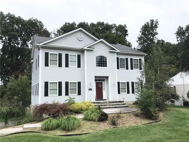 44 Williams Avenue, Newburgh, NY 12550 (MLS #H6143187) :: Corcoran Baer & McIntosh