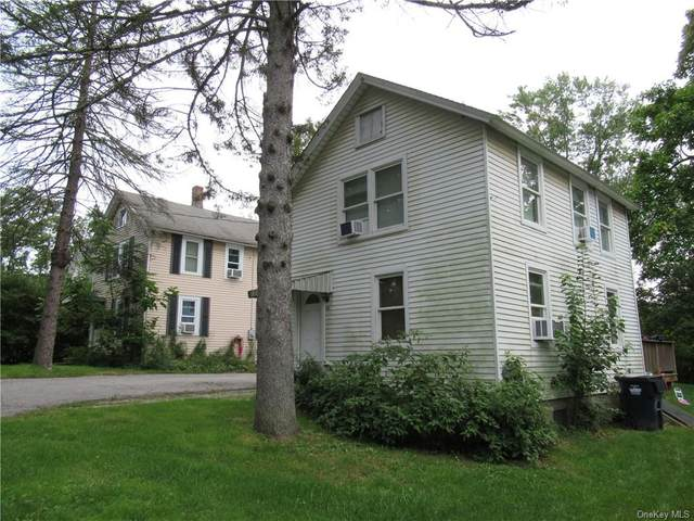 20 Cottage Avenue, Wingdale, NY 12594 (MLS #H6143227) :: Goldstar Premier Properties