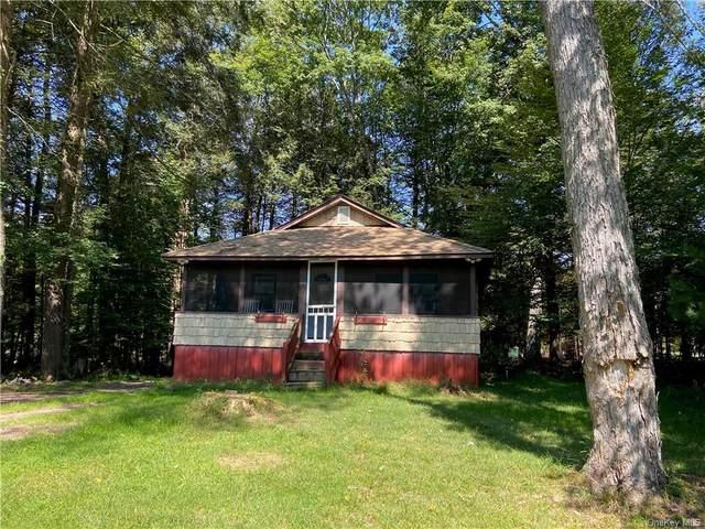 6 W Thompson Place, Smallwood, NY 12778 (MLS #H6143328) :: Goldstar Premier Properties