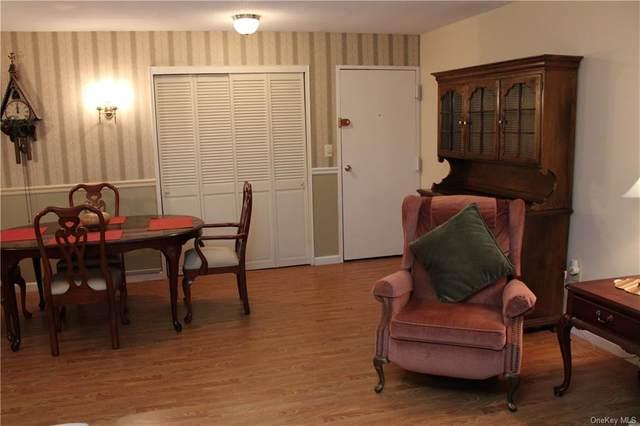 434 Sierra Vista Lane, Valley Cottage, NY 10989 (MLS #H6143368) :: Corcoran Baer & McIntosh