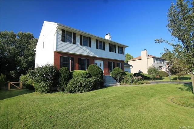 9 Bayberry Lane, Poughkeepsie, NY 12603 (MLS #H6143376) :: Kendall Group Real Estate | Keller Williams