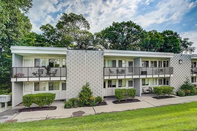 8 Wyndover Woods Lane #5, White Plains, NY 10603 (MLS #H6143378) :: Laurie Savino Realtor