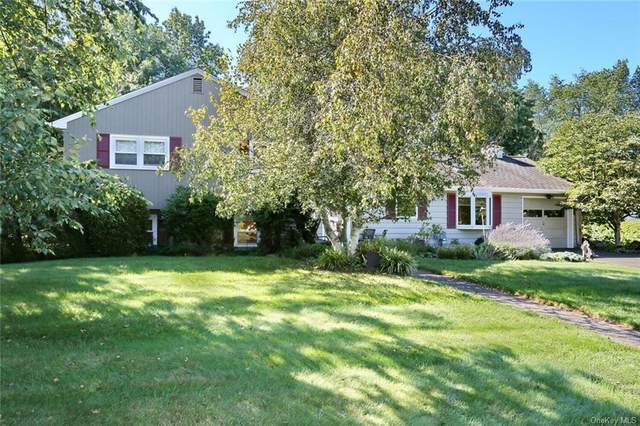 159 Foxwood Road, West Nyack, NY 10994 (MLS #H6143388) :: The SMP Team