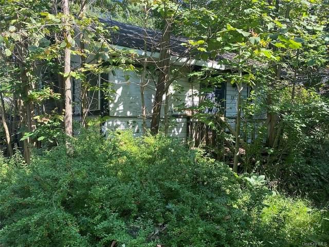 11 Sunset Trail, Monroe, NY 10950 (MLS #H6143453) :: Cronin & Company Real Estate