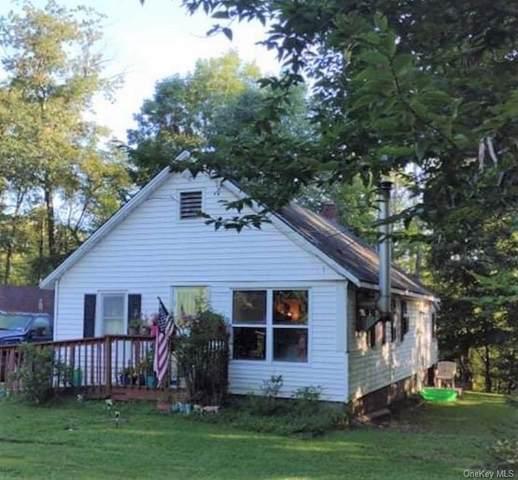 159 Cold Spring Road, Monticello, NY 12701 (MLS #H6143473) :: Goldstar Premier Properties