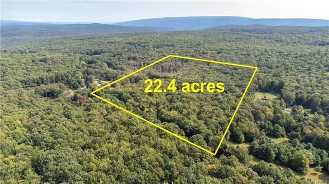 Lot 24 County Route 56 Road, Wurtsboro, NY 12790 (MLS #H6143480) :: Kendall Group Real Estate | Keller Williams