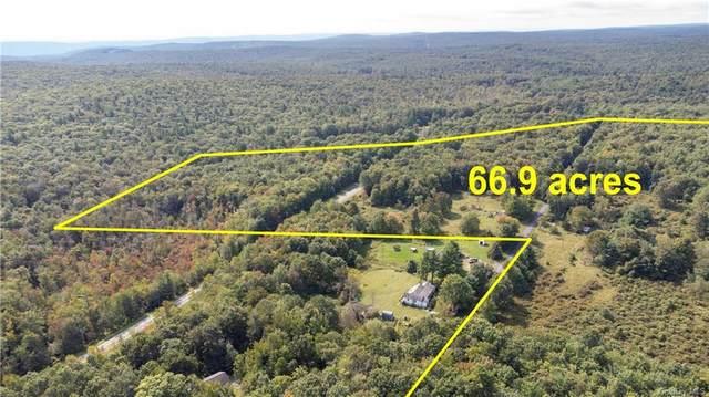 123 Dunn Town Road, Wurtsboro, NY 12790 (MLS #H6143512) :: Kendall Group Real Estate | Keller Williams