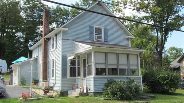 431 Clinton Corners Road, Clinton Corners, NY 12514 (MLS #H6143516) :: Cronin & Company Real Estate