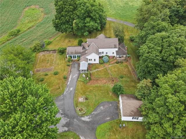 215 Freedom Road, Pleasant Valley, NY 12569 (MLS #H6143547) :: Kendall Group Real Estate | Keller Williams