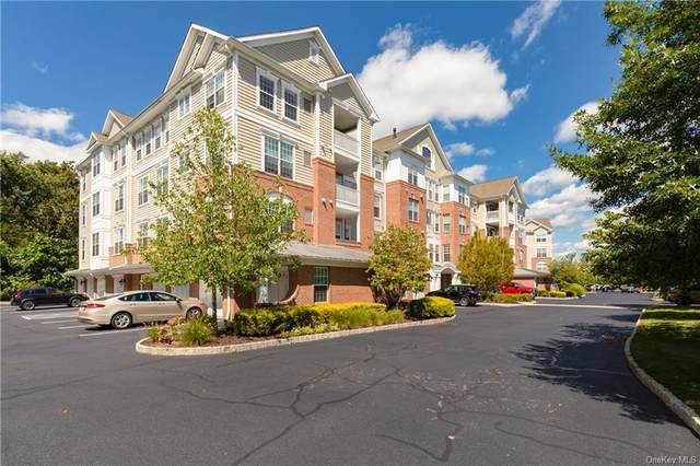 442 Regency Drive, Fishkill, NY 12524 (MLS #H6143635) :: Signature Premier Properties