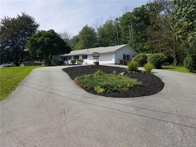 109 Reinhardt Road, Middletown, NY 10940 (MLS #H6143651) :: Kendall Group Real Estate | Keller Williams