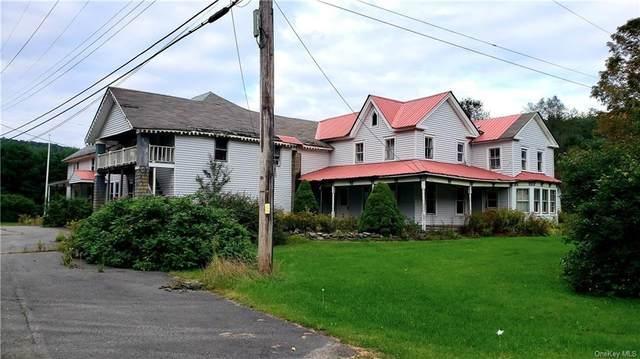1074 Claryville Road, Claryville, NY 12725 (MLS #H6143666) :: Goldstar Premier Properties