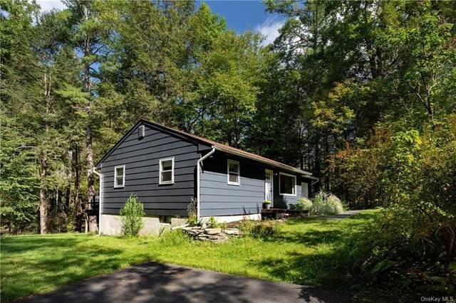 107 Yulan Barryville Road, Barryville, NY 12719 (MLS #H6143718) :: Goldstar Premier Properties