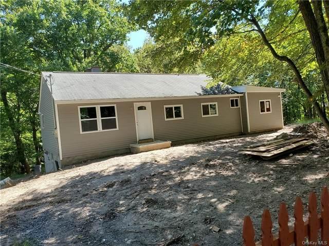 562 Upper Mountain Road, Pine Bush, NY 12566 (MLS #H6143784) :: Team Pagano