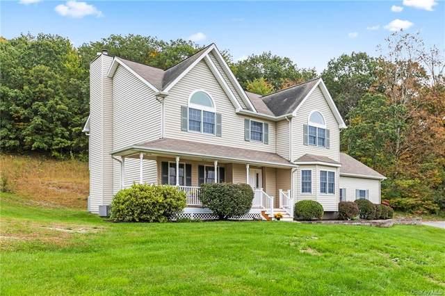 44 Trillium Road, Pleasant Valley, NY 12569 (MLS #H6143794) :: Cronin & Company Real Estate