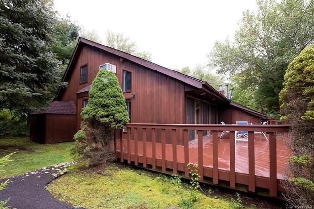 4 Sylvia Lane, Monticello, NY 12701 (MLS #H6143827) :: Goldstar Premier Properties
