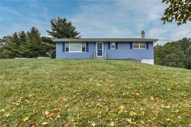 316 Jacobs Road, Westtown, NY 10998 (MLS #H6143839) :: Goldstar Premier Properties