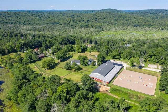 572 E Branch Road, Patterson, NY 12563 (MLS #H6143854) :: Mark Boyland Real Estate Team