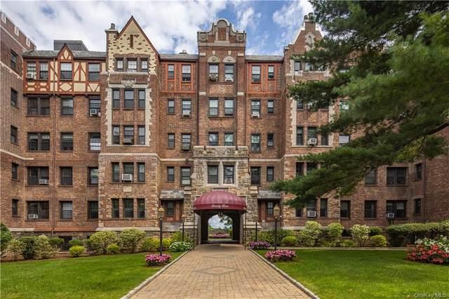 23 Old Mamaroneck Avenue 2F, White Plains, NY 10605 (MLS #H6143864) :: Carollo Real Estate