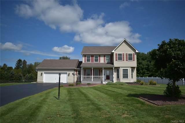 56 Twin Island Circle, Walden, NY 12586 (MLS #H6143890) :: Goldstar Premier Properties
