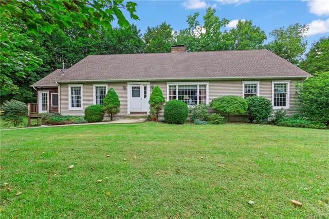 44 Lacona Drive, Patterson, NY 12563 (MLS #H6143900) :: Goldstar Premier Properties