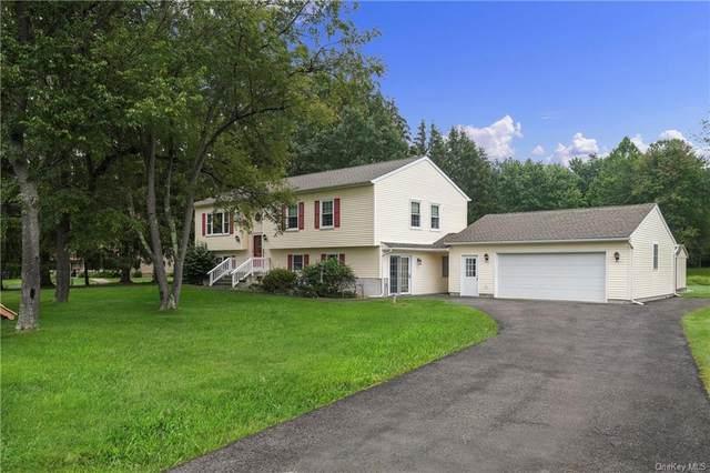 46 Friendly Way, Stormville, NY 12582 (MLS #H6143960) :: Goldstar Premier Properties