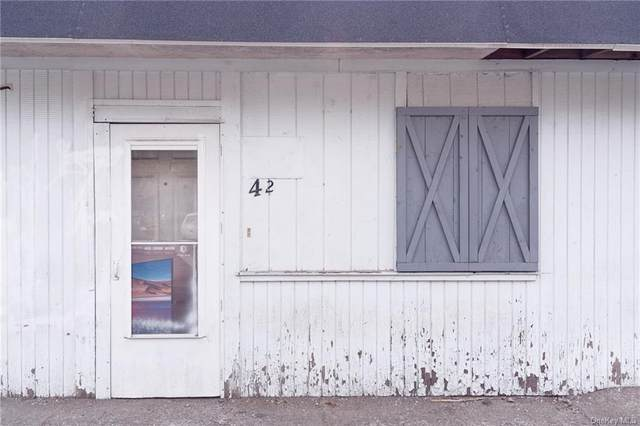 40 City Terrace, Newburgh, NY 12550 (MLS #H6144024) :: Corcoran Baer & McIntosh