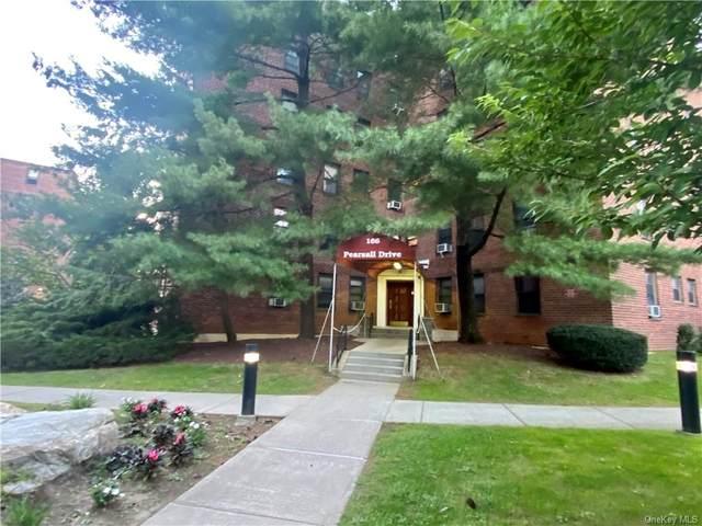 166 Pearsall Drive 1H, Mount Vernon, NY 10552 (MLS #H6144025) :: Carollo Real Estate
