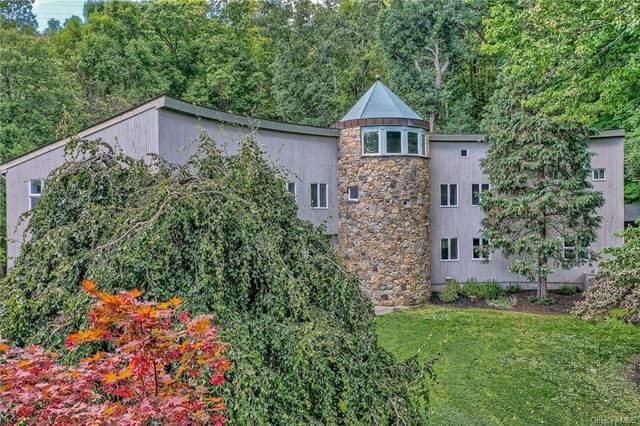 8 Debbie Court, Chester, NY 10918 (MLS #H6144029) :: Goldstar Premier Properties