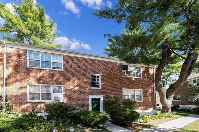23 Fieldstone Drive #166, Hartsdale, NY 10530 (MLS #H6144061) :: Laurie Savino Realtor