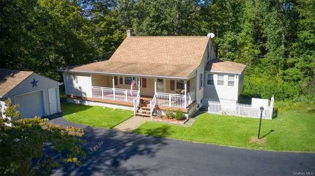 25 Cobey Terrace, Poughkeepsie, NY 12601 (MLS #H6144089) :: Cronin & Company Real Estate