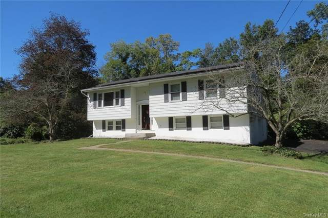 11 Mac Farlane Road, Wappingers Falls, NY 12590 (MLS #H6144122) :: Signature Premier Properties