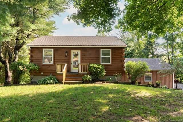 28 Hi View Drive, Wingdale, NY 12594 (MLS #H6144145) :: Goldstar Premier Properties