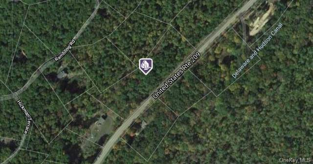 State Route 209 Route, Wurtsboro, NY 12790 (MLS #H6144212) :: The McGovern Caplicki Team