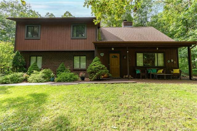 22 Woodcliff Drive, Stormville, NY 12582 (MLS #H6144216) :: Carollo Real Estate