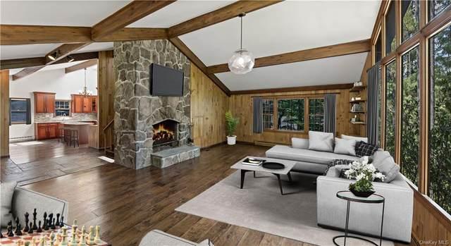 302 Tannery Road, Forestburgh, NY 12777 (MLS #H6144218) :: Goldstar Premier Properties