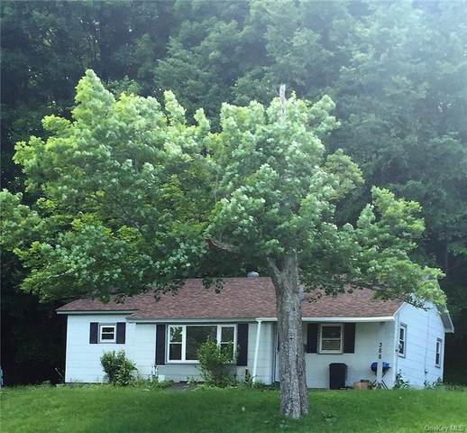 388 Bridgeville Road, Monticello, NY 12701 (MLS #H6144234) :: Goldstar Premier Properties