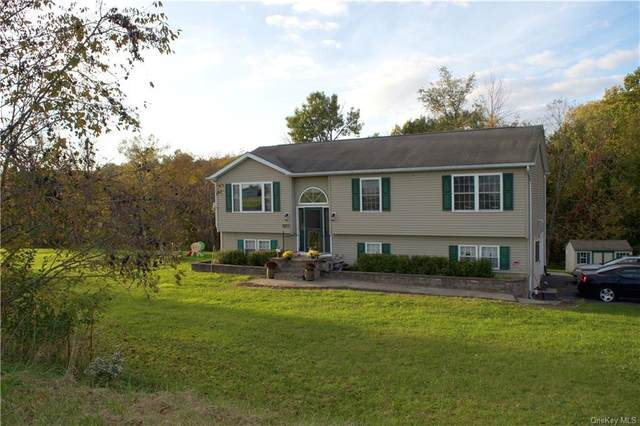 177 Ledge Road, Middletown, NY 10940 (MLS #H6144244) :: Cronin & Company Real Estate