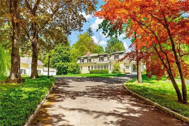 83 Kipp Street, Chappaqua, NY 10514 (MLS #H6144308) :: Carollo Real Estate