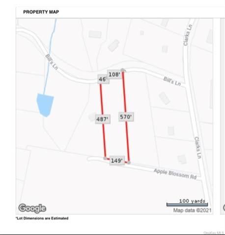 5 Bill S Lane, Marlboro, NY 12542 (MLS #H6144336) :: Team Pagano
