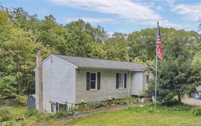 240 Huckleberry Turnpike, Wallkill, NY 12589 (MLS #H6144348) :: Goldstar Premier Properties