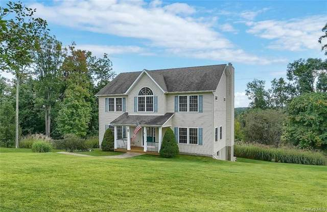 5 Alloway Crescent, Highland Mills, NY 10930 (MLS #H6144392) :: Goldstar Premier Properties