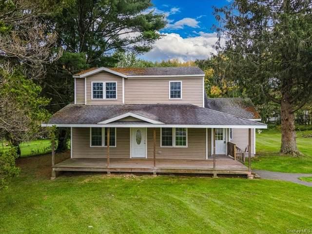 75 Sackett Lake Road, Monticello, NY 12701 (MLS #H6144393) :: Laurie Savino Realtor