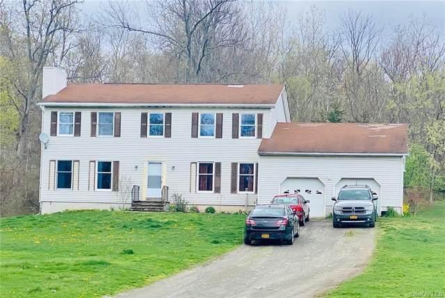 10 Rega Road, Fishkill, NY 12524 (MLS #H6144398) :: Signature Premier Properties